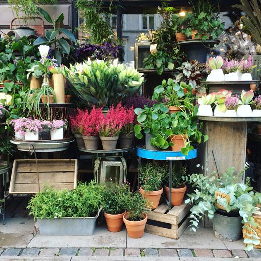 コペンハーゲン、フラワーショップ、ノルディックライフスタイルマーケット、青山ファーマーズマーケット、蚤の市