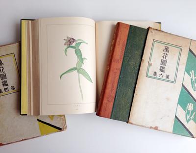 古本、花図鑑、ボタニカルアート、植物図鑑、精密画、辻永