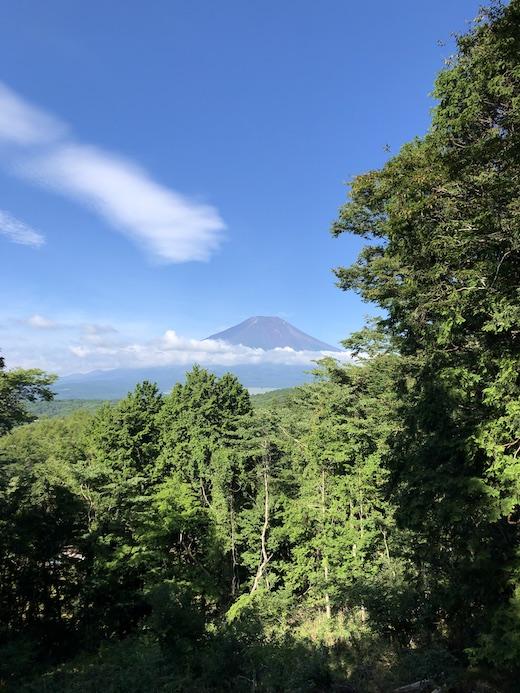 夏休み、富士山、山中湖、2020夏