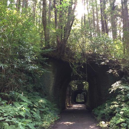 養老渓谷、手彫りトンネル、秋、小湊鉄道
