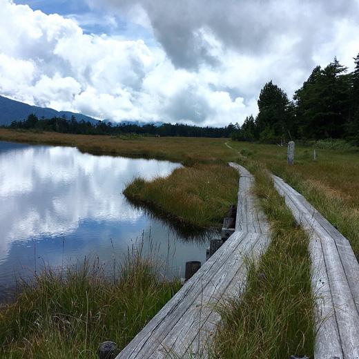 鬼怒沼湿原、奥鬼怒温泉郷、トレッキング、天空の湿原